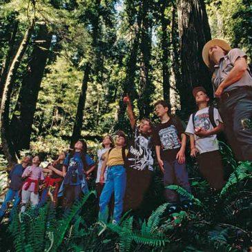 Zašto bi planinarenje trebalo uvesti kao predmet u osnovnim školama