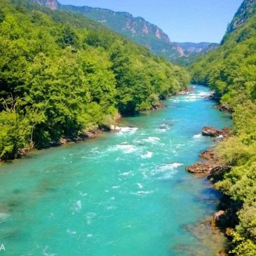 Rafting on the river Tara – the turquoise beauty