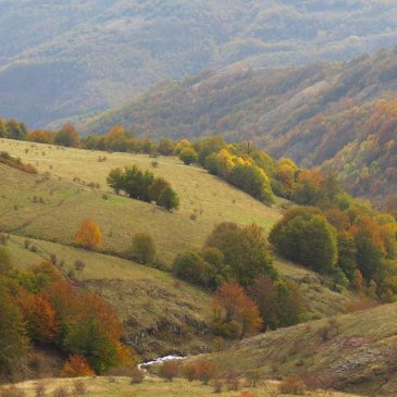 1000 colors of Stara planina
