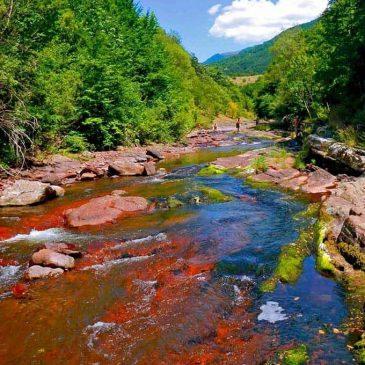 Kanjon Toplodolske reke