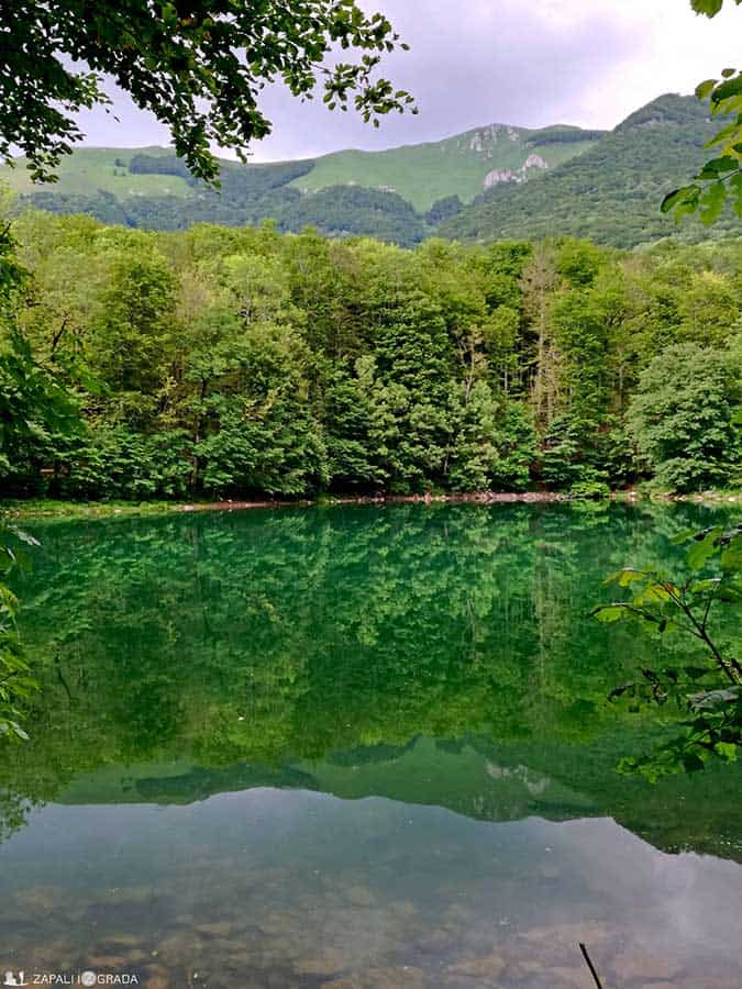 biogradska gora3