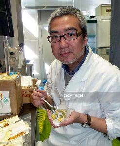 profesor Toshiyuki Nakagaki
