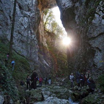 Waterfalls of Beli Izvorac